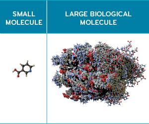 Small molecule drug compared to large molecule drug